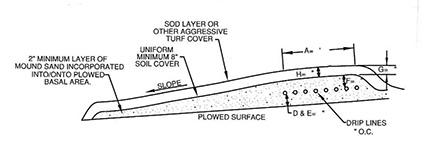 profile-micromound